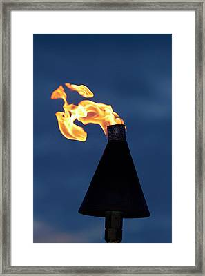 Flame On Kerosene Lantern, Crusoe's Framed Print by David Wall