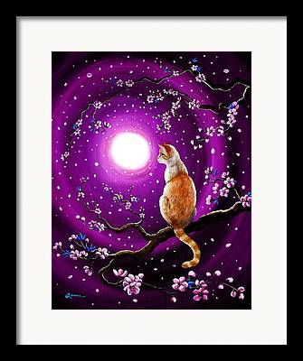 Flame Point Siamese Framed Prints