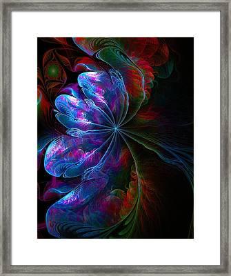 Flamenco Framed Print by Amanda Moore