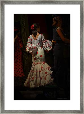Flamenco Dancer #14 Framed Print by Mary Machare
