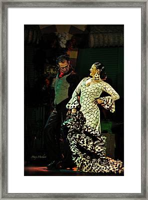 Flamenco Series No 11 Framed Print by Mary Machare