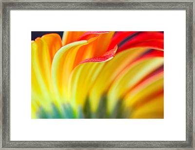 Flames Framed Print by Joan Herwig