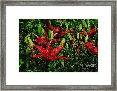 Framed Print featuring the photograph Flames by Kathie Chicoine