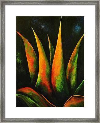 Flaming Aloe Framed Print by Migdalia Bahamundi