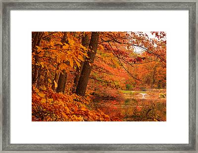 Flaming Leaves Framed Print by Lourry Legarde