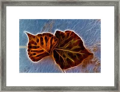 Flaming Leaves Framed Print by Shane Bechler