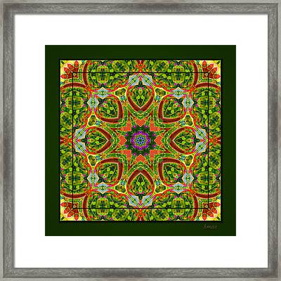 Framed Print featuring the photograph Flaming Neck Kaleidoscope by Barbara MacPhail