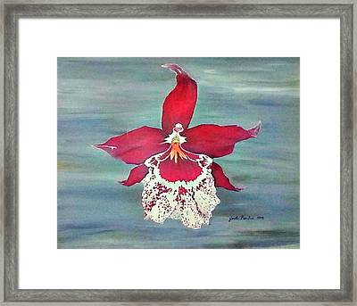 Flaming Orchid Framed Print