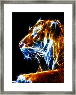 Flaming Tiger Framed Print by Shane Bechler