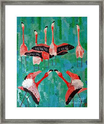 Flamingo 3 Framed Print