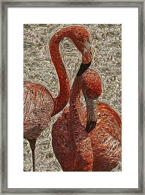 Flamingo 4 Framed Print