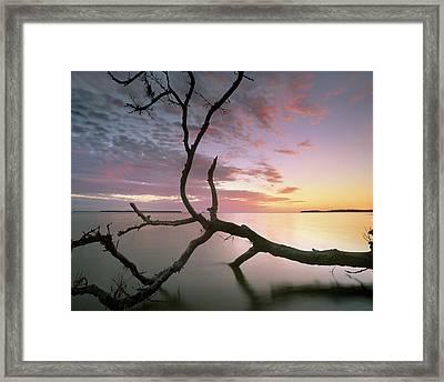 Flamingo Bay, Everglades National Park Framed Print