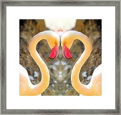 Flamingo Double Vision #1 Framed Print by Evan Peller