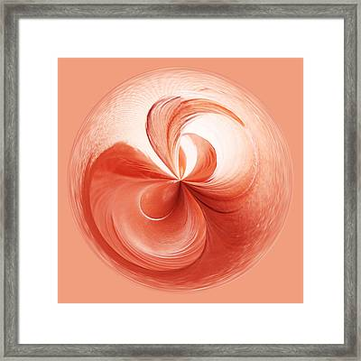 Flamingo Feather Orb Framed Print by Paulette Thomas