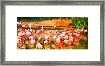 Flamingo Gathering Framed Print