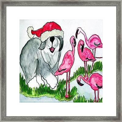Flamingo Herder Framed Print