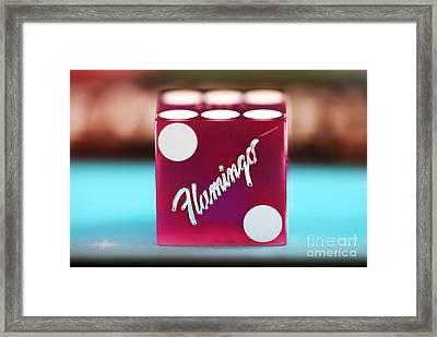 Flamingo Framed Print by John Rizzuto
