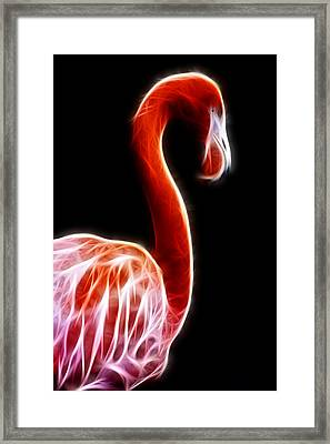 Flamingo On Black Fractal Framed Print