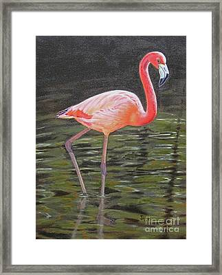 Framed Print featuring the painting Flamingo On Parade by Jimmie Bartlett