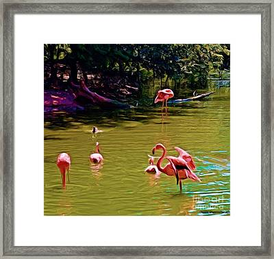 Flamingo Party Framed Print