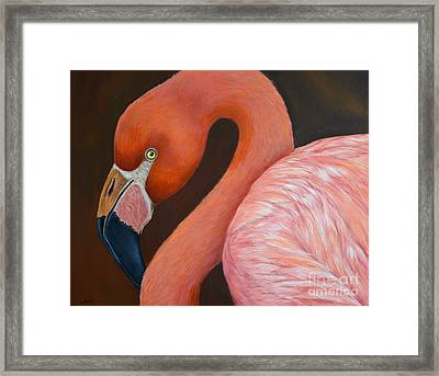 Flamingo Pretty In Pink Framed Print