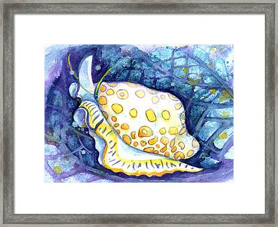 Flamingo Tongue Framed Print