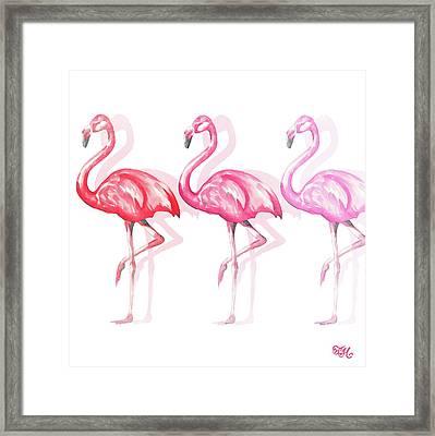 Flamingo Trio II Framed Print