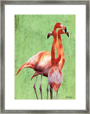 Flamingo Twist Framed Print