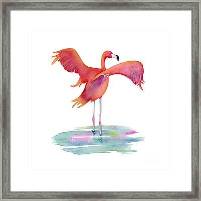 Flamingo Wings Framed Print by Amy Kirkpatrick
