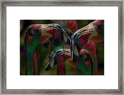 Flamingos 3 Framed Print