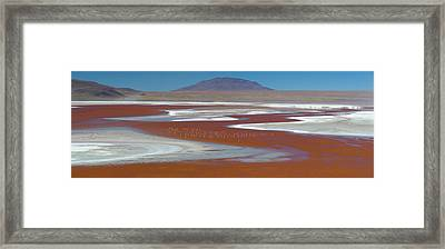 Flamingos On The Red Waters Of Laguna Framed Print by Panoramic Images