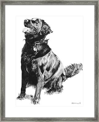 Flat Coat Framed Print by Rob Christensen