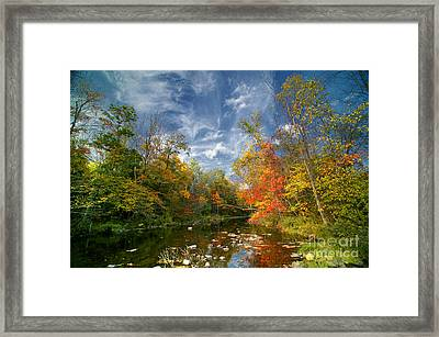 Flatbrook Framed Print by Nicki McManus