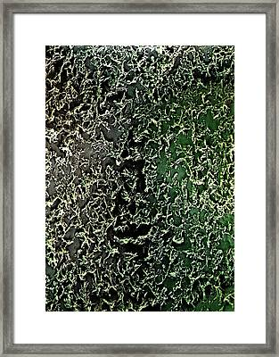 Flax Leaf Surface Framed Print