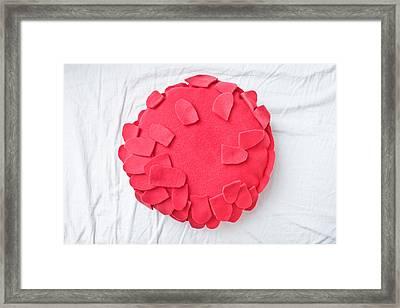 Fleece Cushion Framed Print by Tom Gowanlock