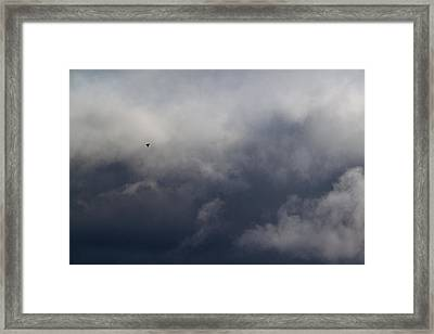 Fleeing The Storm   Framed Print