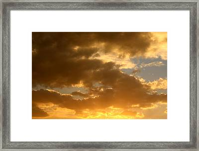 Fleeting Gold Framed Print