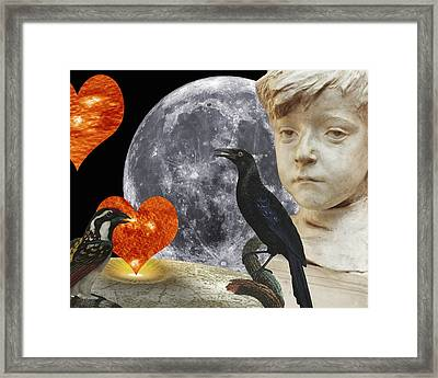 Fleeting Love  C2014 Paul Ashby Framed Print by Paul Ashby