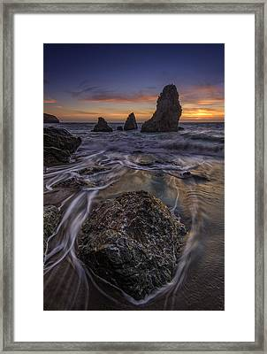 Fleeting Framed Print