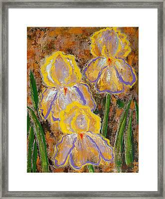 Fleur D' Iris Framed Print by Margaret Bobb