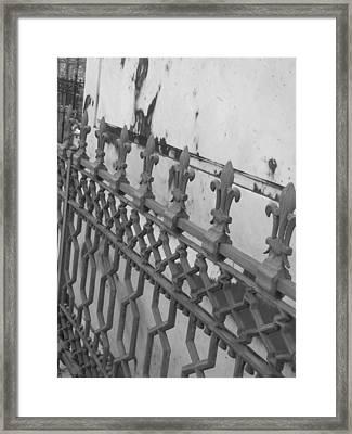 Framed Print featuring the photograph Fleur De Lis by Beth Vincent