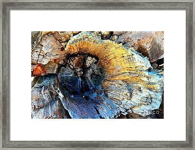 Fleur Of The Sea Framed Print by Lauren Leigh Hunter Fine Art Photography