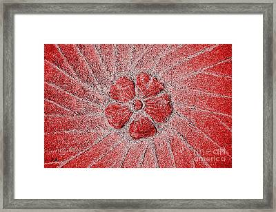 Framed Print featuring the photograph Fleur Scarlet by Geri Glavis