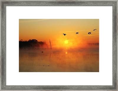Flight At Sunrise Framed Print