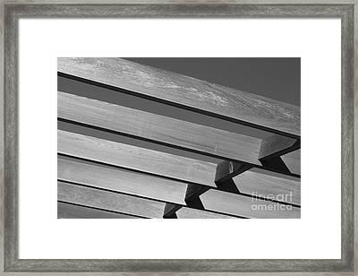 Flight Framed Print by Barbara Bardzik
