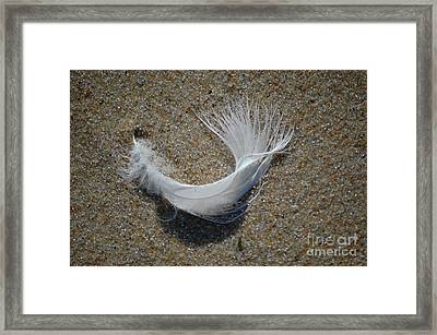 Framed Print featuring the photograph Flight by Christiane Hellner-OBrien