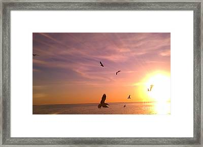 Flight Into The Light Framed Print by Chris Tarpening
