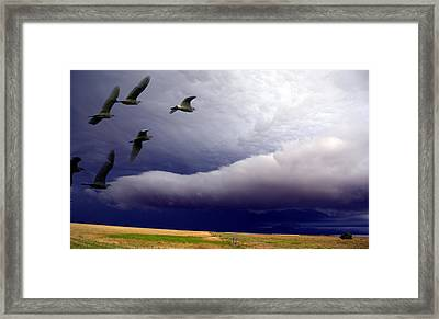 Flight Into The Storm Framed Print
