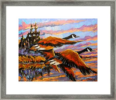 Flight Navigations Geese In  Motion Framed Print by Richard T Pranke