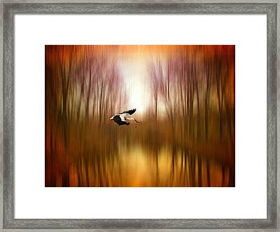Flight Of Fancy Framed Print by Jessica Jenney